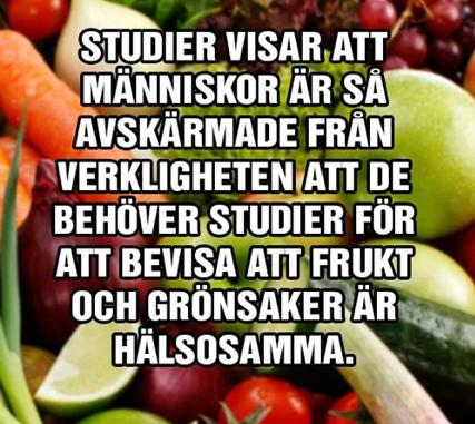 Lena Holfve, författare till Utmattad, Mögelförgiftad, Parasitfri, Är barn allt?, Häktad på sagolika skäl, Mordet på Törnrosa